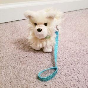 American Girl Pomeranian